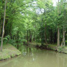 Meander Ščavnice 3