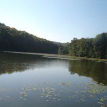 Negovsko jezero 1